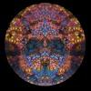 Shamikh  - The Spirit Vine  (forest dark psy)   Visionary Shamanics records UK / 4th comp VA