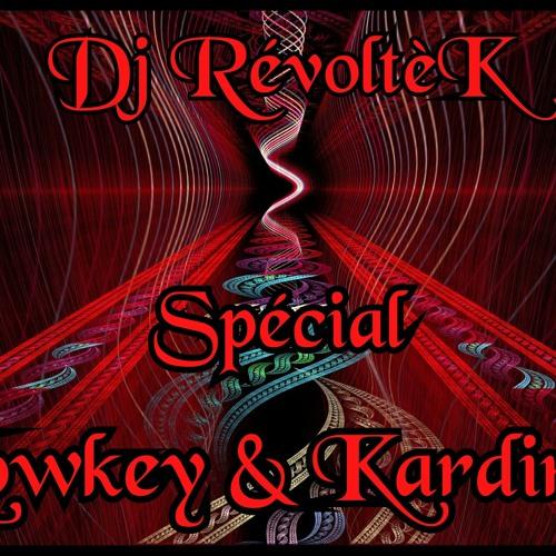 """- Spécial Lowkey & Kardinal - Remixed By RévoltèK """" Vinyl Only """""""