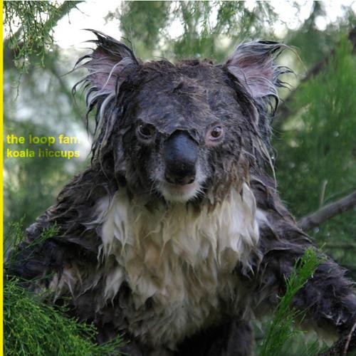 the loop fam - koala hiccups