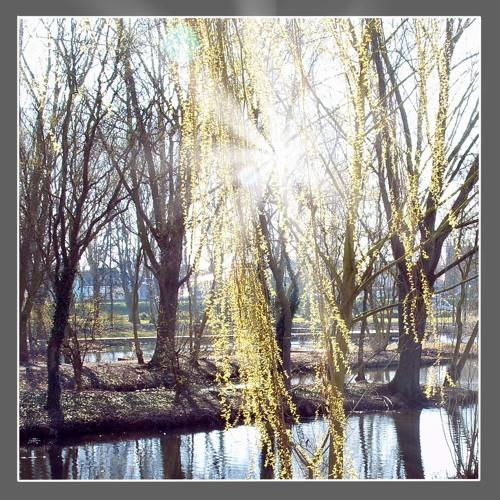 Fusain ellipse by Julien Boulier (24/07/2009) Album Resolution 2009; photographie Christine Assino