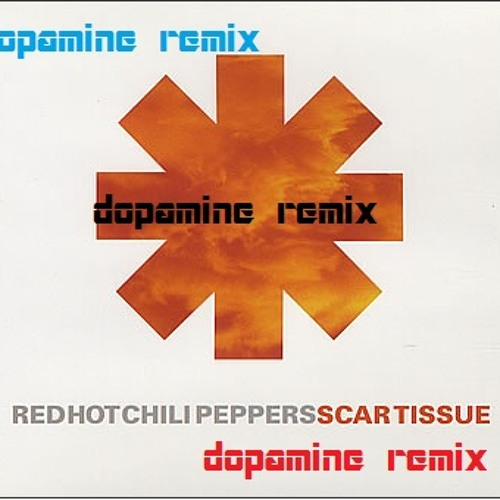 (Red Hot Chili Peppers) Scar Tissue Remix