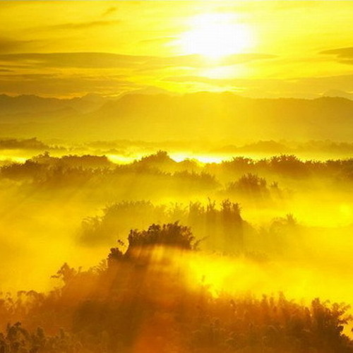 Morning Sun Adam Freeland Remix.