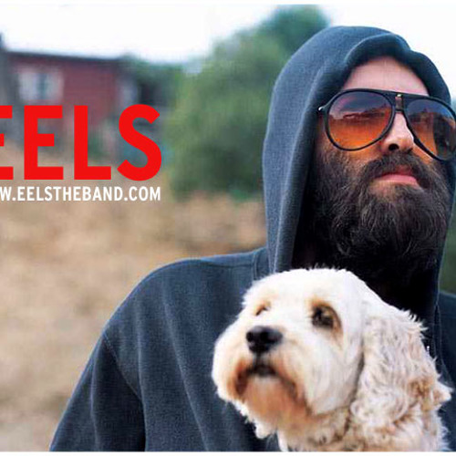 EELS- All The Beautiful Things