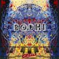 Bodhi Deliquesce Artwork