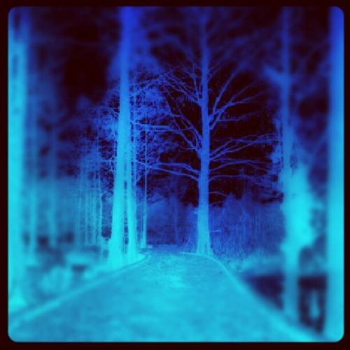 Winterwoods (title track from Winterwoods EP)