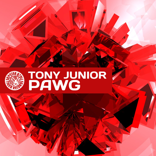 Tony Junior - PAWG (TEASER) [OUT ON TIGER RECORDS]