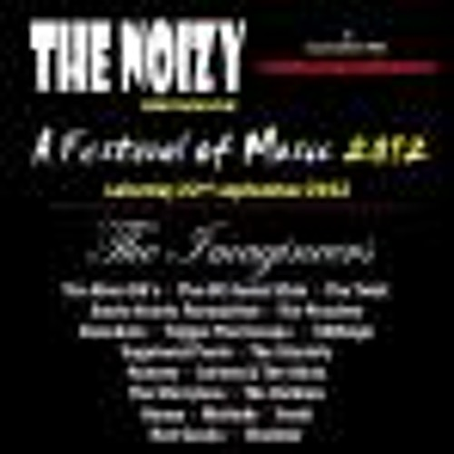 Noizy Festival Part 2