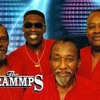 THE TRAMMPS New Song
