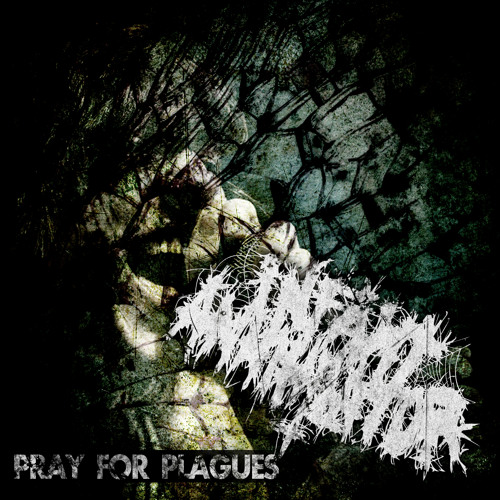 Pray For Plagues (BMTH Cover)