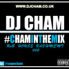 Cham in the mix 002
