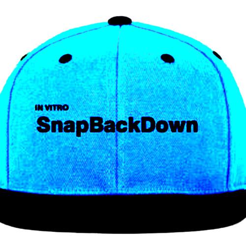 SnapBackDown (Song idea, Thoughts? Swedish House Mafia Esq!)