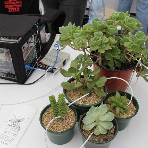 Pulsu(m)Plantae versión serial