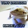 Tiny Dragon