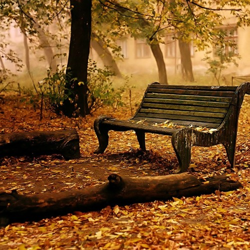 Thumbnail Alireza Mohammadi Autumn Memories Instrumental
