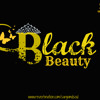 Sargam ( D' Soul ) Feat. A bazz | New Song | Single | 2013 - BLACK BEAUTY