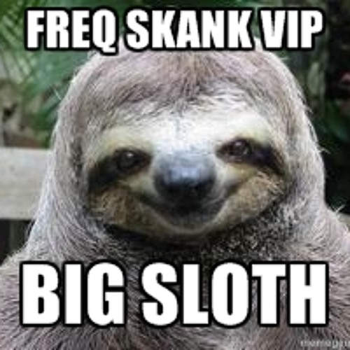 Freq Skank - (Big Sloth VIP)  ={FREE DOWNLOAD}=