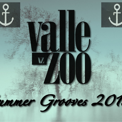 Valle Zoo - Summer Grooves 2013