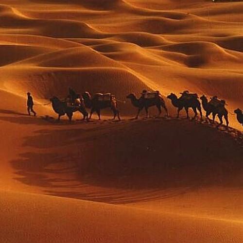Edward Maya ft. Vika Jigulina - Desert Rain (new)