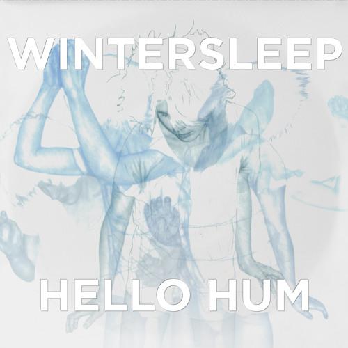 Wintersleep - Permanent Sigh