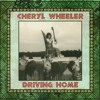 Cheryl Wheeler - Act Of Nature