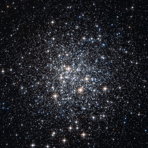 StarLight - Warrior Poet and Instrumentalist