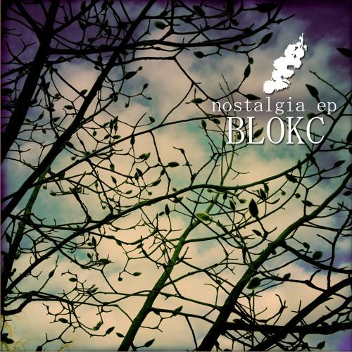 Blokc - In Transit (Van Did Remix) [SC edit]
