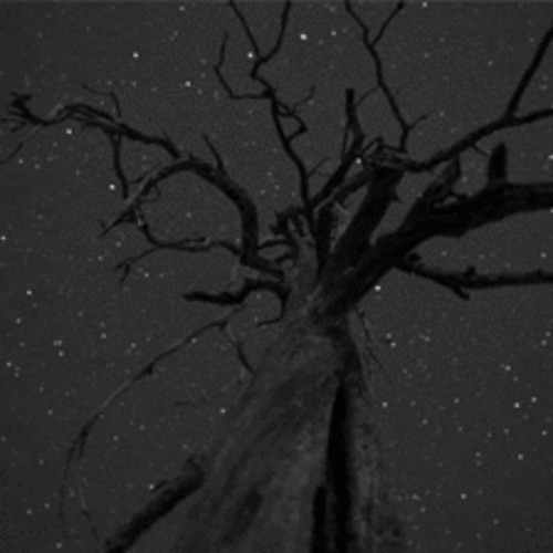 Starscraping