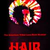 Electric Blues - Hair Swedish version 1997
