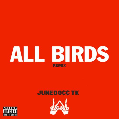 All Birds Remix