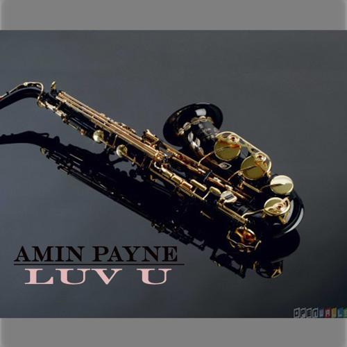 AMIN PAYNE - LUV U