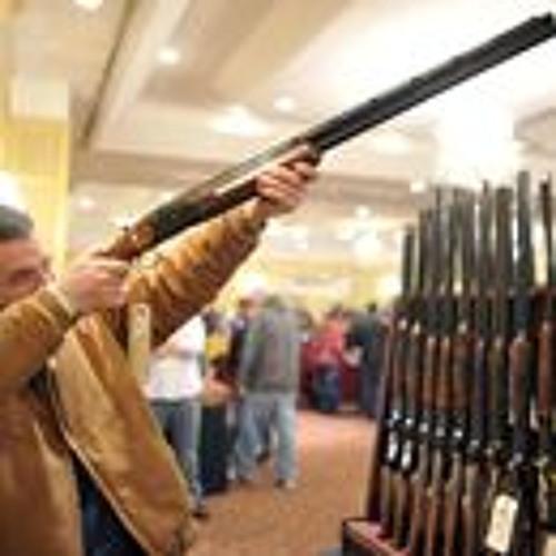 Free Gun Training for Teachers