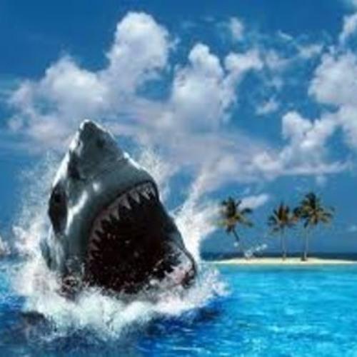 Shark by Savant