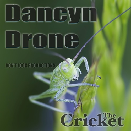 Dancyn Drone - The Cricket [Don't Look Productions] Available now on Beatport/iTunes/Spotify