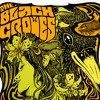 Black Crowes ~ You've Got to Hide Your Love Away