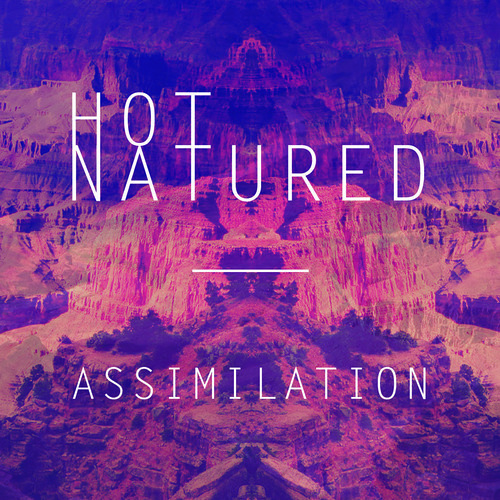 Hot Natured & Ali Love - Assimilation