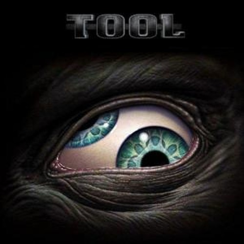 Tool :: Forty-Six & 2 (HEAVYGRINDER)