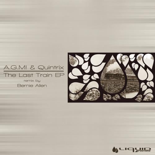 A.G.M&QUINTRIX - UFO (Original mix) :: Liquid Grooves ::