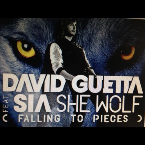 Echo Castro-Shewolf (trial)