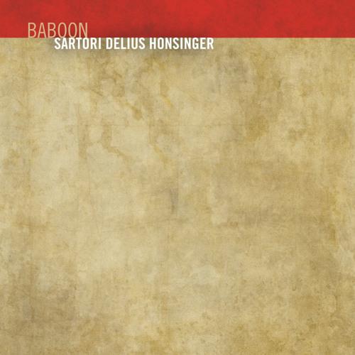 Trialogues - Baboon by Enrico Sartori Tobias Delius Tristan Honsinger