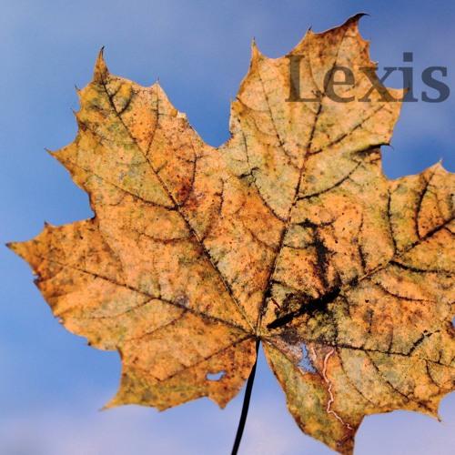 Lexis - Windfalls