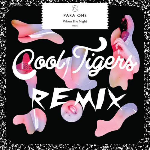 Para One - When the Night (Cool Tigers Remix)