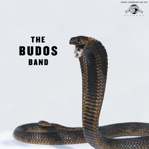 "The Budos Band ""Unbroken, Unshaven"""