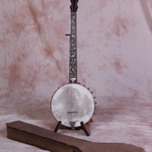 Skinhead Banjo, Bloody Williamson