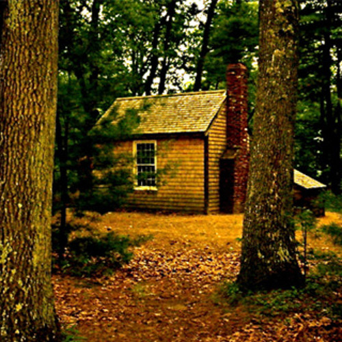 Solitude excerpt from Walden by Thoreau (Diane Havens)