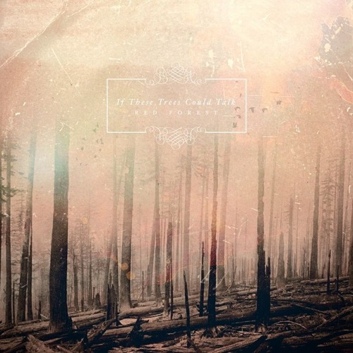If These Trees Could Talk - Barren Lands of The Modern Dinosaur