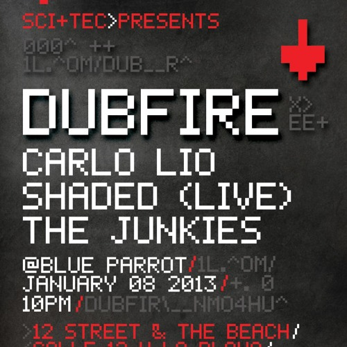 The Junkies Live @ The BPM Festival, Blue Parrot, Playa Del Carmen, Mexico 08-01-2013