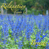 Breeze - A pieces of relaxing music, download free (see description), album available in iTunes
