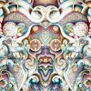 Galactronic - Silvatica - 04 Canta (Colibrí Remix)