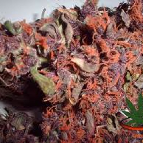 #OMNIPOTENT - Green Purple Red ft Shady Blaze
