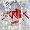 Skrillex - Bangrang (DJ A.B.D Extended Remix)